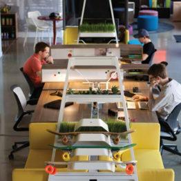 Next Generation - Real Estate Millennials